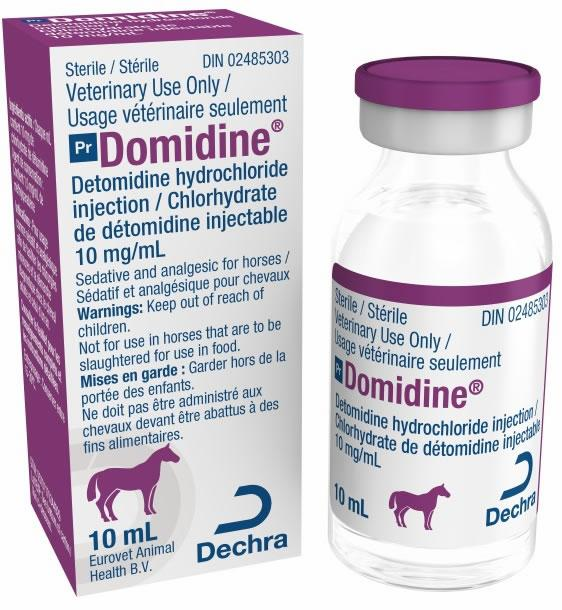 Domidine  (10 mg/mL)